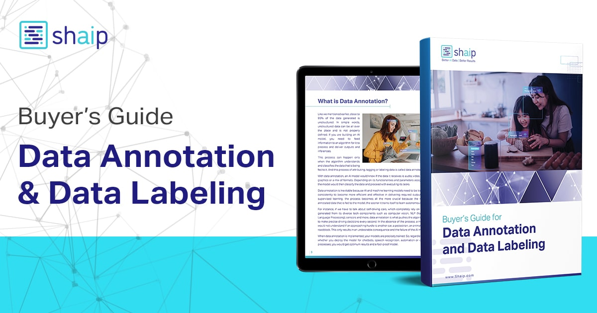 Data Annotation And Data Labeling