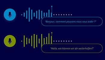 Multilingual Audio Data Services