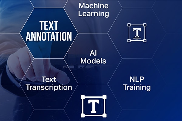 Text Annotation Services