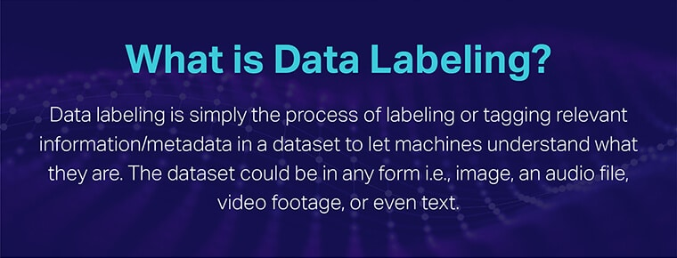 What Is Data Labeling